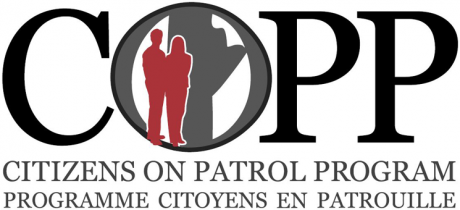 cropped-Biilingual-logo-1.png
